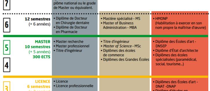 schéma système enseignement supérieur LMD
