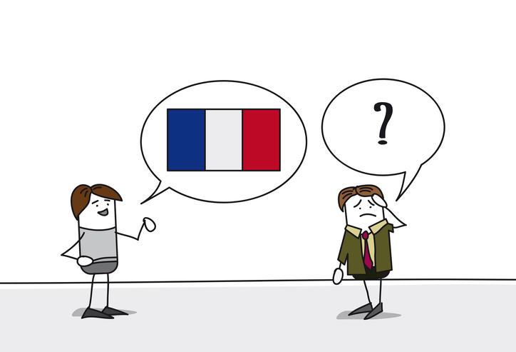subtilit u00e9s de la langue fran u00e7aise